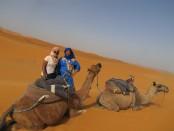 Fes, Sahara 272