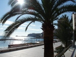 The marina in Monte-Carlo